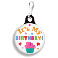 It's My Birthday Collar Charm