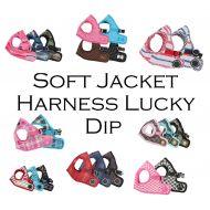 Jacket Harness Lucky Dip