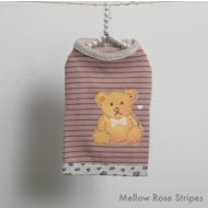 Honey Bear Rose