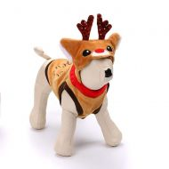 Reindeer For Hire