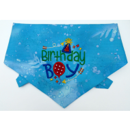 Birthday Boy Bandanna