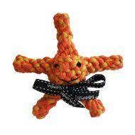 Sally the Starfish