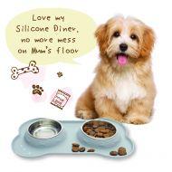 Silicone Diner-Small