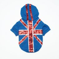 Sequin Flag Hoody